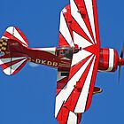 The Pitts Special - Shoreham 2013 by Colin J Williams Photography