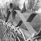 Black and White Gate by Bailey Mattas