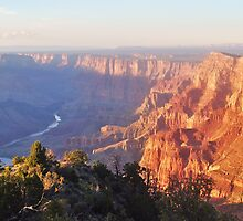 Grand Canyon Sunset by Ginarenee17