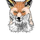 The Fox by pda1986