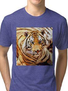 Bengal Tiger Tri-blend T-Shirt