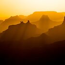 Into the Sun at The Grand Canyon by Barbara Burkhardt