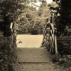 Bridge at Marlay Park by Éilis  Finnerty Warren