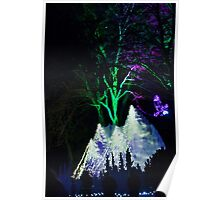 Wild Lights Flying Eagles, Woodland Park Zoo Poster