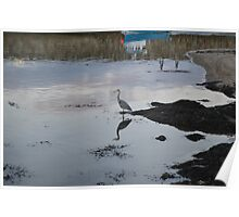 Heron Reflection in St Andrews Harbour Poster
