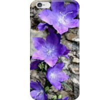 Fairy Bower iPhone Case/Skin