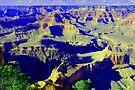 Grand Canyon... South Rim by John Schneider