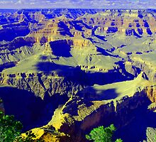 Grand Canyon... South Rim by John Schneider