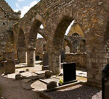 Timoleague Abbey in Ireland by donberry