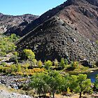 Brunswick Canyon on the Carson River, Moundhouse, Nevada USA by Anthony & Nancy  Leake