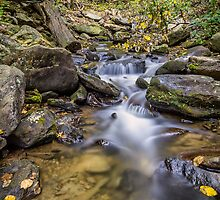 Fall arrives at Amicalola Falls State Park by Bernd F. Laeschke