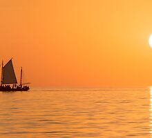 Sailing on a Golden Sea by Mieke Boynton