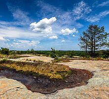 Arabia Mountain National Heritage Area by Bernd F. Laeschke