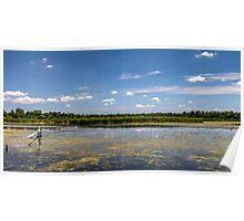 Wetlands II Poster