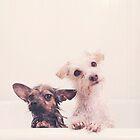 Bathtime by msruffles