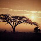 South Africa sunset by Boris TAIEB