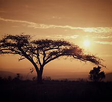 South Africa sunset by Boris TAIEB