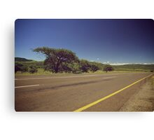 South Africa road Canvas Print