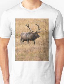 Big Bull Unisex T-Shirt