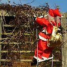 Merry Xmas  by Antoinette B