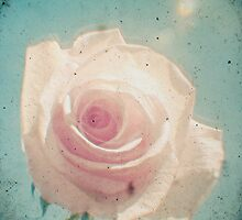A Rose by Any Other Name by Cassia