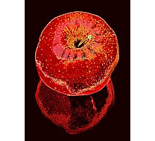 Big Red Apple & Reflection Photographic Print