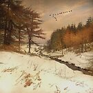 """""""A Winters Tale"""" by peaky40"""