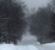 Snowy Road by Susan S. Kline
