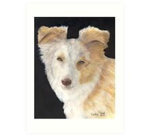 Mini Aussie Dog Red Merle Cathy Peek Art Art Print