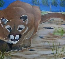 Florida Panther on Beach by towncrier