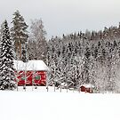 """""""It's beginning to look a lot like Christmas..."""" by Stephanie Owen"""