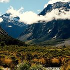 New Zealand Landscapes by sabrina card