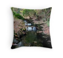 Flowing water... Throw Pillow