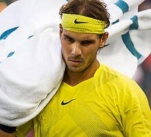 Towel by nadalnews