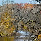 Perkiomen Creek - Perkiomenville PA - Autumn Foliage by MotherNature