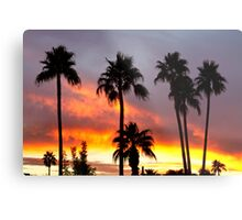 Tropical Colorful Storm Metal Print