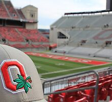 Ohio Stadium The Horseshoe by mwatts44