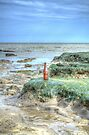 Bottle on the Beach by Nigel Bangert