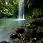 Twin Falls, Maui by Michael Treloar