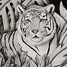 Tiger in Jungle by jkartlife