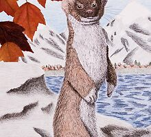 Weasel in Fall by jkartlife