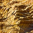 Fraser Island -rocks by mandyemblow