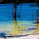 Lake Birrabeen -fraser island by mandyemblow