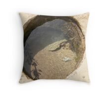 A Rock-pool & it's captives. Point Lonsdale beach. Vic. Throw Pillow