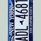 NY License Plate  by careball