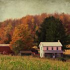 Fall on the farmland by vigor