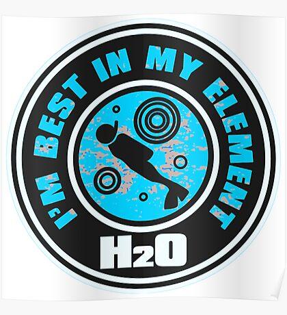 H2O_DIVER Poster