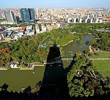 View from Tianning Pagoda, Changzhou, Jiangsu by DaveLambert