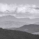 Mt Cobbler by Natalie Ord