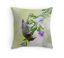 The Silvereye Throw Pillow